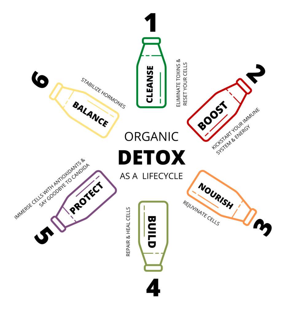 detox.infographic-white-color-